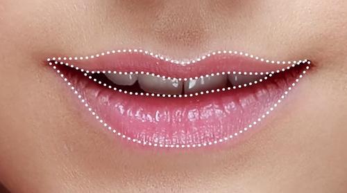 Tanka gornja usna